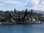 Coffs Harbour - Hafen