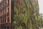 Vertical Garden am Caixa Forum